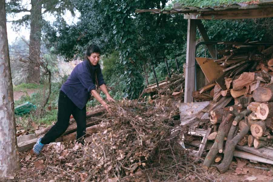 http://franciscoiurcovich.com.ar/files/gimgs/th-18_00014-francisco iurco 1094-AA021_.jpg